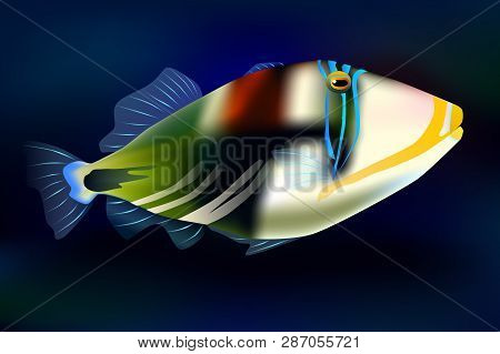 Lagoon Triggerfish, Vector Illustration Sea Ocean Fish