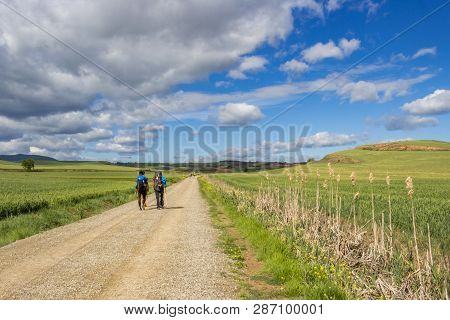 Rear View Of Pilgrims On An Unpaved Country Road On The Way Of St. James, Camino De Santiago Between