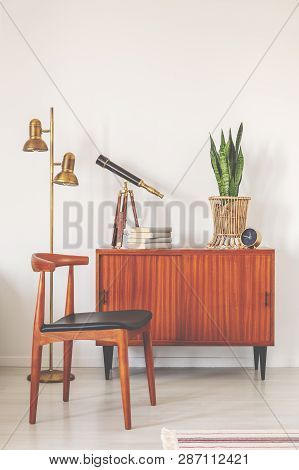 Trendy Wooden Chair Next To Retro Cabinet With Books And Plant In Pot, Real Photo With Copy Space On