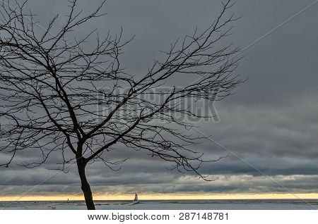 Bare Tree, Cloudy Skies, A Subtle Yellow Sunset, And Navigational Aids Including A Lighthouse