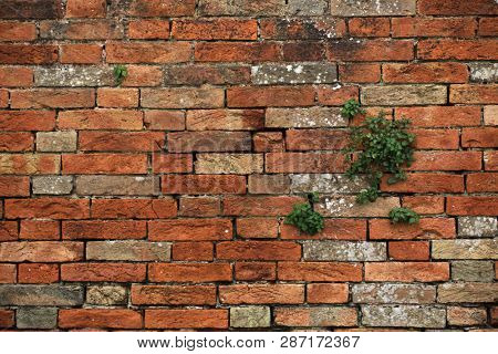 Old brick wall at Fondamente Nove in Venice, Italy. Background texture.
