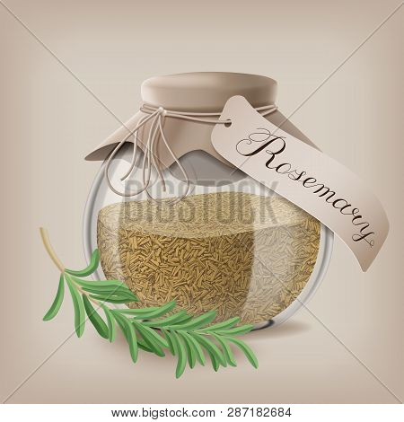 Crushed Rosemary Spice In A Glass Jar With A Sprig Of Rosemary. Vector Illustration