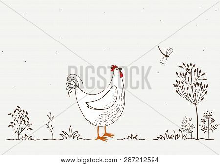 Illustration Of Isolated Cartoon Rooster And Dragonfly