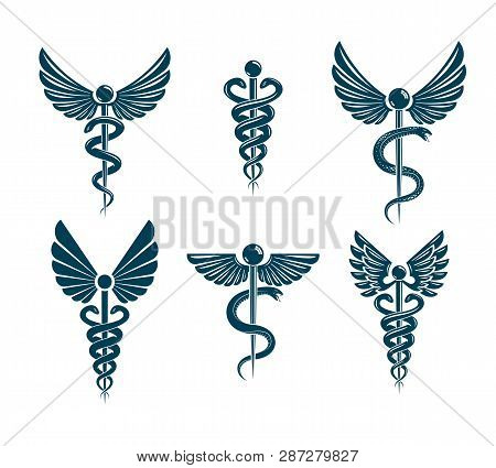 Vector Winged Caduceus Illustrations Collection. Pharmacology And Healthcare Idea Emblems.