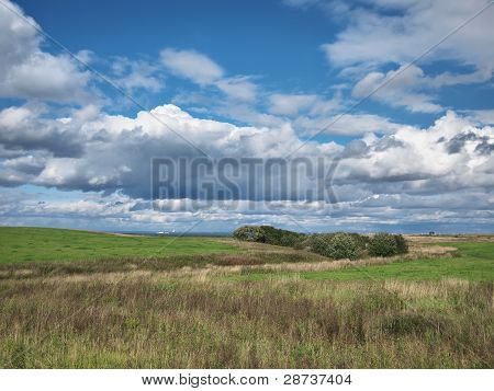 Background. A Green Field And The Blue Sky With Clouds.
