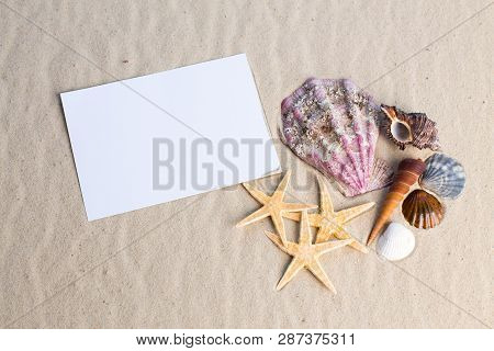 Holiday Beach Concept With Shells, Seastars And An Blank Postcard