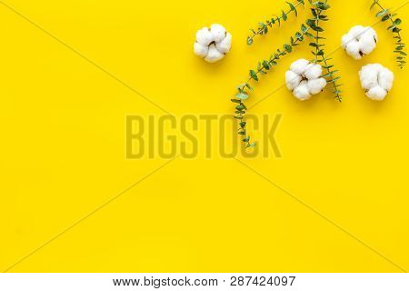 Composition With Eucalyptus Branches And Cotton Flowers On Yellow Background Top View, Flat Lay Copy