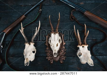 Professional Hunters Equipment For Hunting. Rifle, Knives, Trophy Sculs, Ammunition, And Others On A