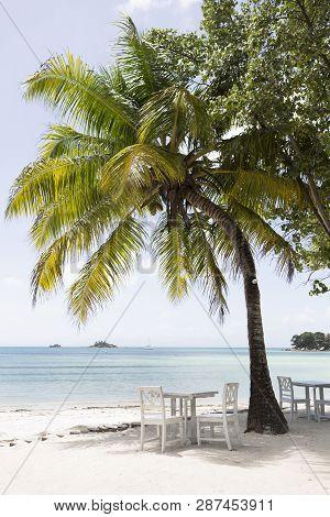 Tropical Landscape At Praslin Island, Seychelles