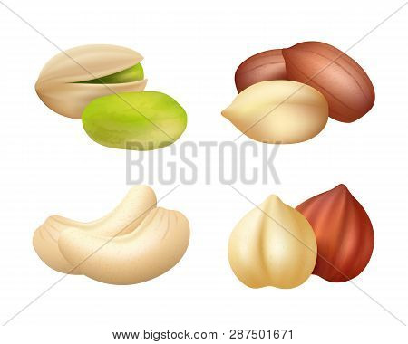 Nuts Realistic. Mixed Seeds Dry Food Dried Cashew Vector Pictures Of Nuts. Cashew And Hazelnut, Pist