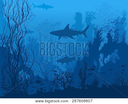Blue Underwater Landscape With Sharks, Fishes, Coral Reefs, Huge Rocks And See Weeds. Tropical Under