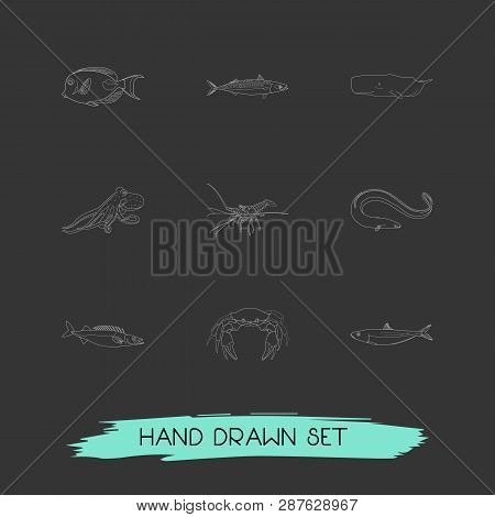 Set Of Fauna Icons Line Style Symbols With Sardine, Mackerel, Crab And Other Icons For Your Web Mobi