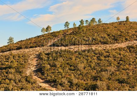 Hill Roads