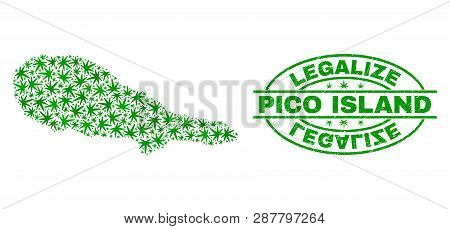 Vector Cannabis Pico Island Map Mosaic And Grunge Textured Legalize Stamp Seal. Concept With Green W