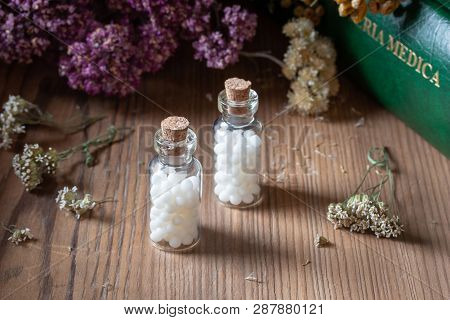Bottles Of Homeopathic Globules With Dried Herbs And A Materia Medica, I.e. A List Of Remedies And T
