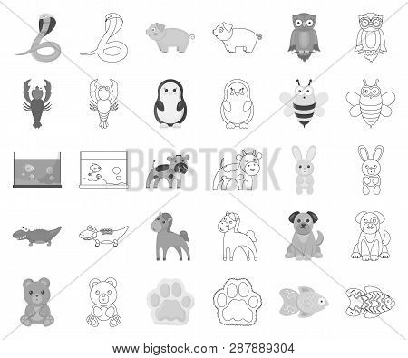 An Unrealistic Monochrome, Outline Animal Icons In Set Collection For Design. Toy Animals Vector Sym