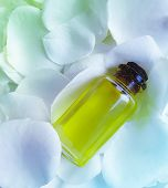 oil flower rose background pampering, fragrance, fresh poster