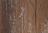 Shards of Frost on Shed Door in winter sunlight poster