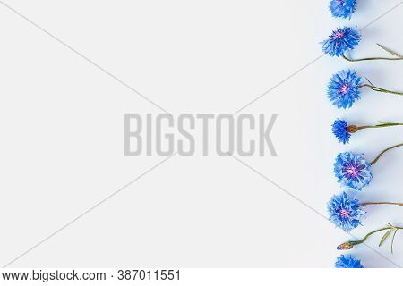 Flower Line Of Blue Cornflowers On A Light Blue Background. Top View, Copy Space. Empty Space For A