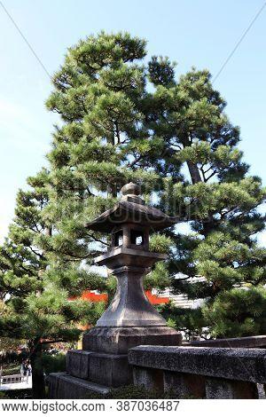 Fushimi-ku, Kyoto, Japan, November 17, 2017 : Stone Lantern Of Japanese Style And Pine Tree Backgrou