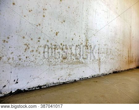 Close Up Of Mould Revealed On A Wall Due To Damp And Poor Air Circulation