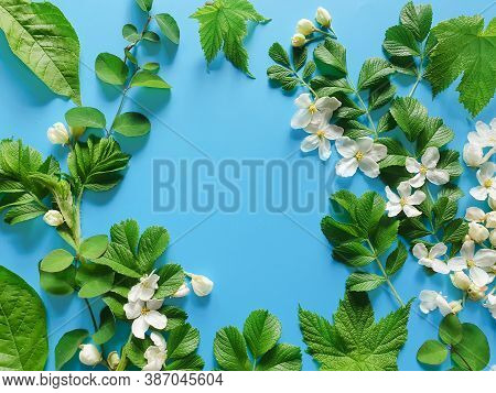 Floral Frame Of Fresh Greens And White Flowers On A Blue Background. Top View, Copy Space, Flower Fl