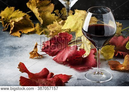 Dry Red Wine In Large Glass, Autumn Still Life With Red And Yellow Leaves On Gray Background, Wine T