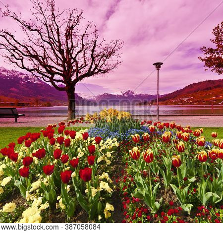 Landscaped Park With Flower Beds Near The Lake In Switzerland