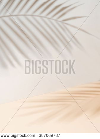 Palm Leaf Shadows On White Wall And Cream Pastel Floor. Abstract Background Of Shadows Palm Leaves F