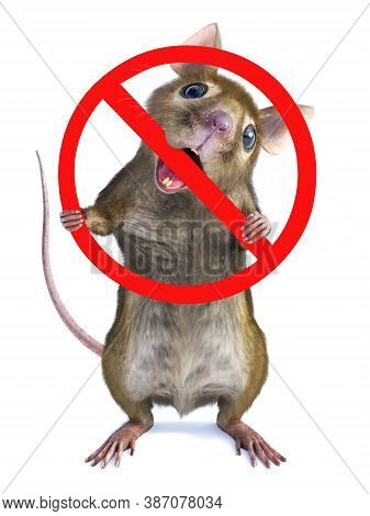3d Rendering Of A Cute Mouse Standing Up On Two Legs And Chewing On A Big Red Prohibition Sign That