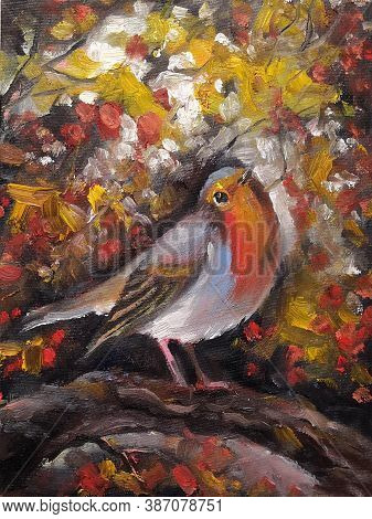 Cute A British Red Robin Birds. Oil Painting On Canvas. Autumn Background.