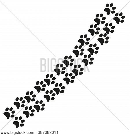 Footpath Trail Of Animal. Dog Or Cat Paws Print Isolated On White Background. Trail Footpath Wildlif