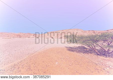 Breathtaking Landscape Of The Rock Formations In The Israel Desert In Faded Color Effect. Lifeless A