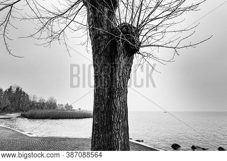 Deserted Shore Of Lake Garda In Italy In The Absence Of Tourism In Black And White.