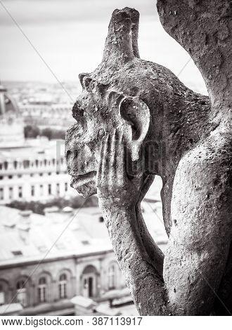Notre Dame De Paris Cathedral In Black And White, Paris, France. Melancholic Chimera Statue Like Got
