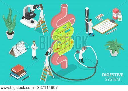 Human Gut Flora, Healthy Digestive System. 3d Isometric Flat Vector Illustration.