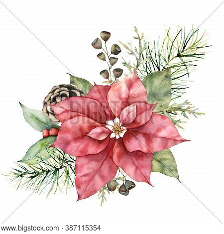 Watercolor Christmas Boquet With Poinsettia, Cone And Berries. Hand Painted Holiday Plant With Pine