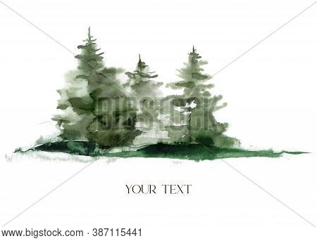 Watercolor Winter Forest Composition. Hand Painted Fir Trees Illustration Isolated On White Backgrou