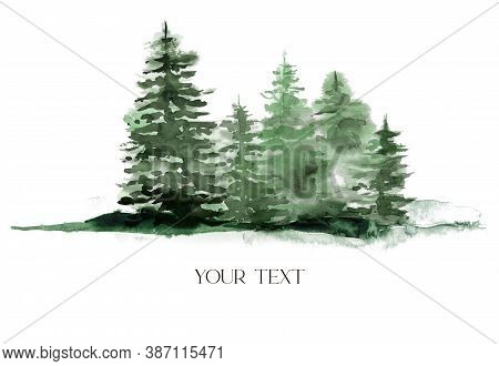 Watercolor Winter Green Forest. Hand Painted Foggy Fir Trees Illustration Isolated On White Backgrou