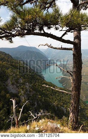 Tara National Park, Serbia. Viewpoint Banjska Stena. View At Drina River Canyon And Lake Perucac Wit