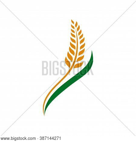 Love Wheat Grain, Wheat Nutrition, Wheat Rice Agriculture Logo Inspiration Vector