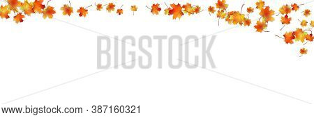 Horizontal Pattern Bright Colorful Maple Autumn Foliage With Shadow Isolated On White. Graphic Desig