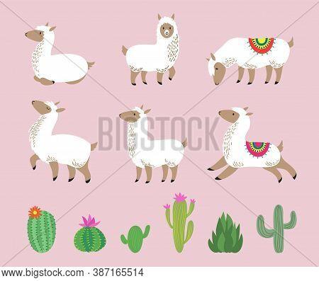 White Llama Set. Cute Alpaca, Cartoon Wool Wild South America Animals. Childish Llamas Characters An