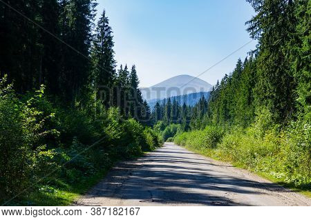 View Of Mount Hoverla From The Road. The Top Of Mount Hoverla. Carpathian Mountains In Ukraine