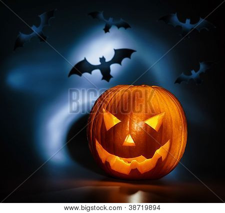 Picture of halloween holiday background, carved glowing pumpkin and black bat in dark night, jack-o-lantern, creepy nightmare, scary shadow, halloween celebration