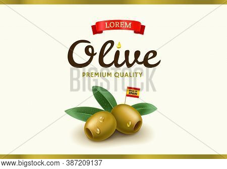 Green Olive Label With Realistic Olive, Design For Canned Olives Packaging And Olive Oil. Vector Ill
