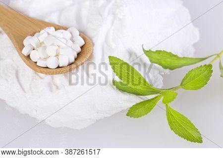 Pills, Powder And Leaves Of Stevia Plant - Stevia Rebaudiana.