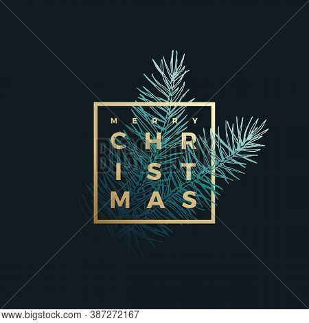 Merry Christmas Abstract Vector Classy Label, Sign Or Card Template. Hand Drawn Fir-needle Spruce Br
