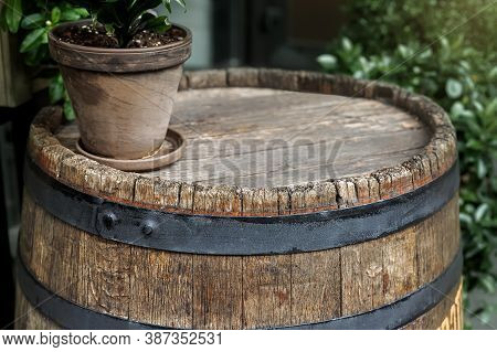 Close-up Background Of Top Of Old Retro Vintage Weathered Wooden Cask Barrel With Flower Pot. Wineya