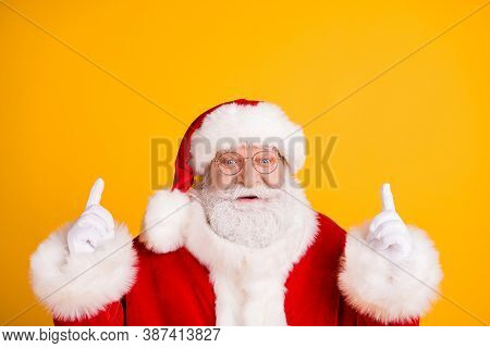 Close Up Photo Jolly Holly Magic Fairy Grey Beard Santa Claus Indicate X-mas Christmas Spirit Advert